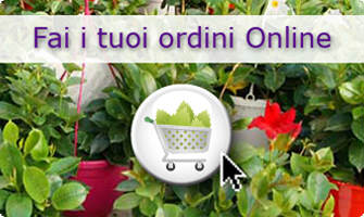 Cultivating Quality Plants - Fai i tuoi ordini Online